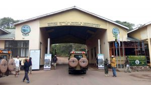 Ngorongoro conservation park tour