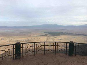 Serengeti savanah