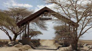 Serengeti Safari tours